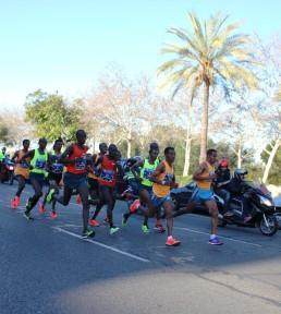 seville marathon